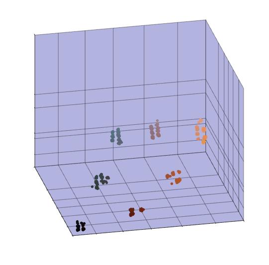 Clustered result